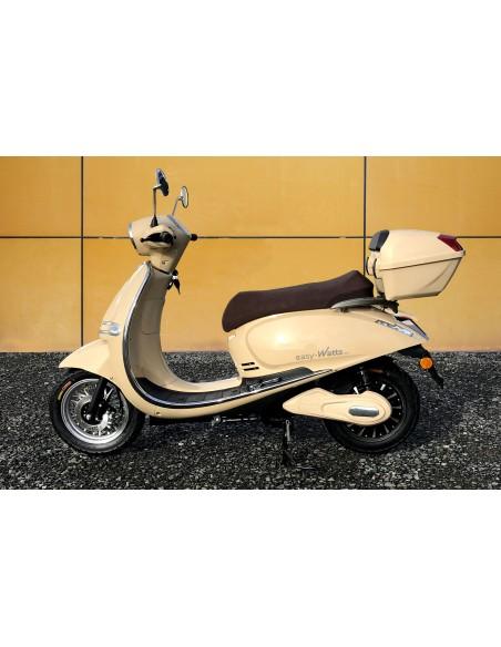 scooter électrique adulte 80 km/h